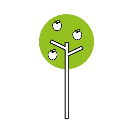 tree apple fruit natural foliage park plant vector illustration Ilustração
