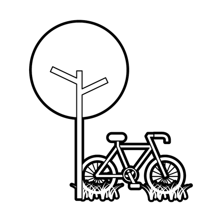 tree bicycle natural foliage park plant vector illustration