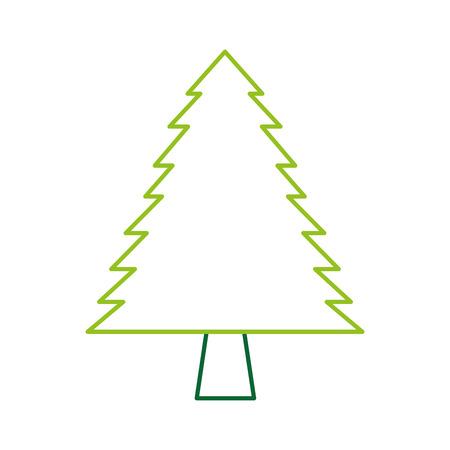 pine tree forest natural flora image vector illustration Illustration