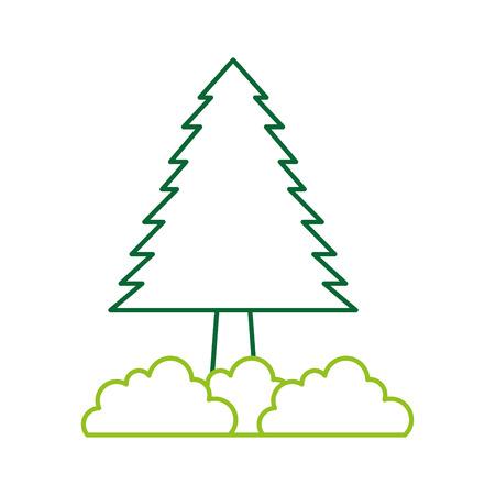 pine tree bushes forest natural flora image vector illustration