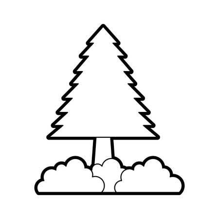 pine tree forest natural flora foliage vector illustration
