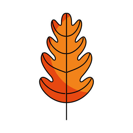 autumn background: autumn leaf season natural foliage flora vector illustration