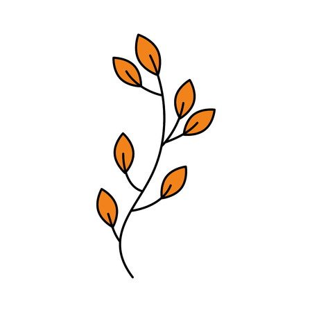 autumn tree branch leaves foliage botanical image vector illustration Illustration