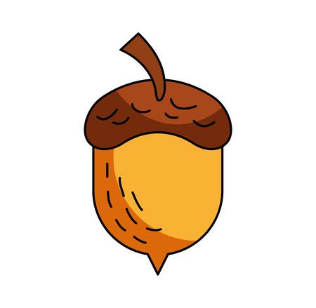 acorn oak nut tree fruit forest on the white background vector illustration