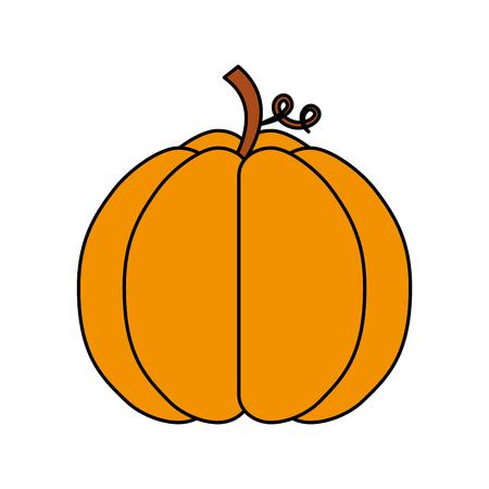 autumn seasonal pupmkin harvest nature vector illustration Stok Fotoğraf - 86100377