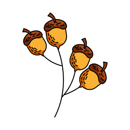 oak branch with acorns natural foliage vector illustration