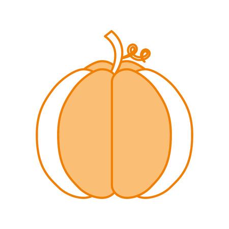autumn seasonal pupmkin harvest nature vector illustration Stok Fotoğraf - 86100498