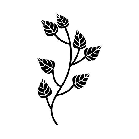 autumn tree branch leaves foliage botanical image vector illustration Illusztráció