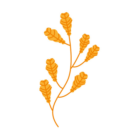 autumn tree branch leaves foliage botanical image vector illustration Illustration