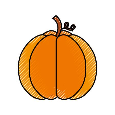 秋の季節の pupmkin の収穫自然ベクトルイラスト