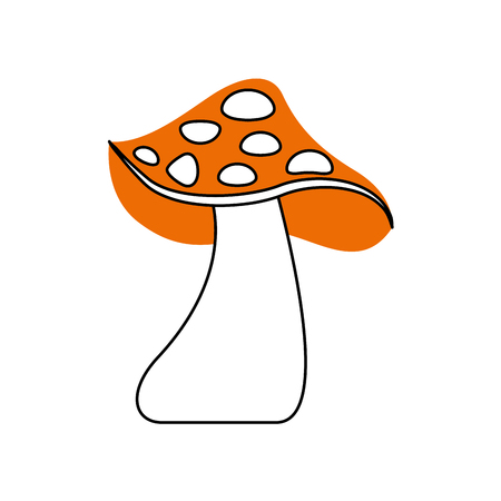 autumn mushroom natural flora forest vector illustration