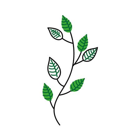 秋の木の枝葉葉植物画像ベクトルイラスト  イラスト・ベクター素材