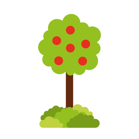 tree with fruit natural forest environment concept vector illustration
