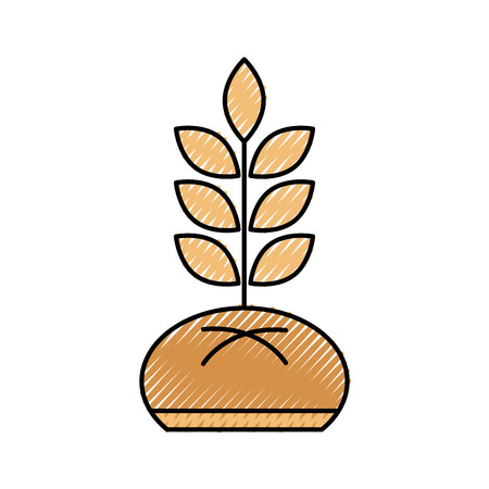 bread and wheat bakery pastry product food fresh vector illustration