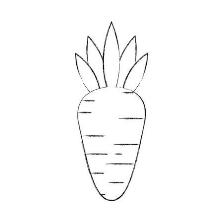 ニンジン野菜の新鮮な健康食品のベクトル図  イラスト・ベクター素材