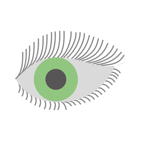 green eye look eyelashes vision cartoon vector illustration