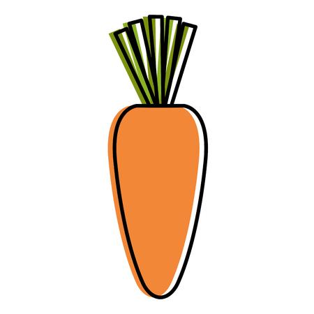 ontwerp van de het pictogram vectorillustratie van de wortel het verse groente