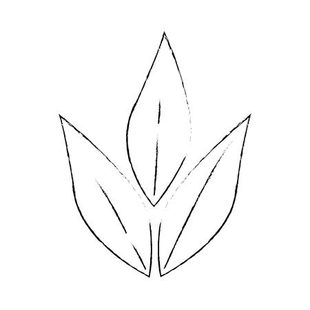올리브 분기 격리 아이콘 벡터 일러스트 디자인