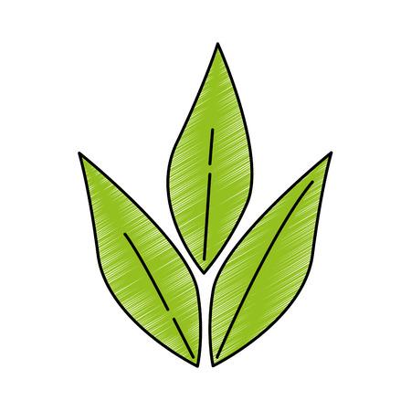 olive branch isolated icon vector illustration design Reklamní fotografie - 87386321