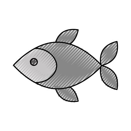 신선도 해산물 식사 벡터 일러스트와 함께 생선 가게 시장