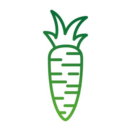 Wortel Groente Verse supermarkt voedsel ontwerp vector illustratie Stock Illustratie