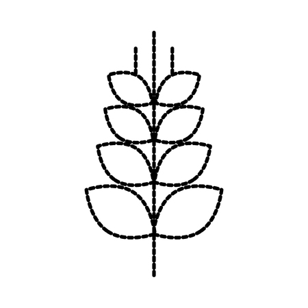 wheat or barley ears branch grains harvest on white background vector illustration Illustration