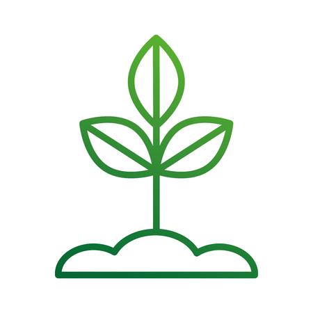 杭地盤や成長植物分岐葉ベクトル イラスト  イラスト・ベクター素材
