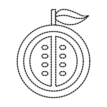 La moitié de la passion fruit tropical sain illustration vectorielle de fruits Banque d'images - 87737132