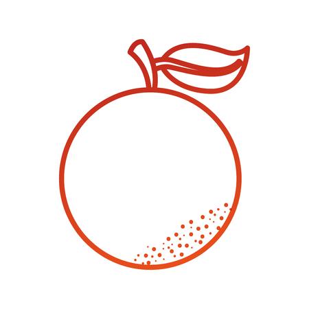 オレンジ色の citurs フルーツ ビタミン栄養ベクトル図