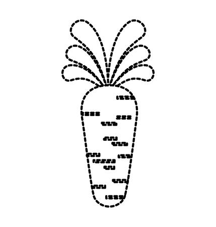 carrot vegetable organic agriculture food vector illustration Illusztráció