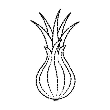 vegetable onion harvest nutrition ingredient vector illustration