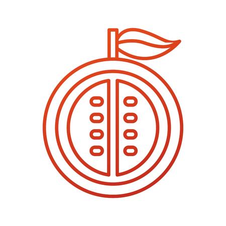 half of passion fruit tropical healthy food vector illustration Banco de Imagens - 87734712