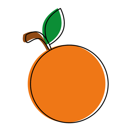 Orange fresh fruit icon vector illustration design Illustration