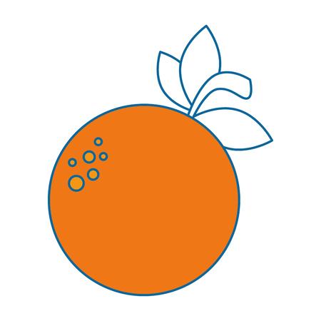 orange fresh fruit icon vector illustration design Illustration