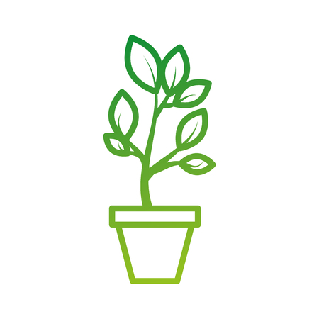 growing tree green sprouts rising from ceramic pot concept vector illustration Stok Fotoğraf - 88082679