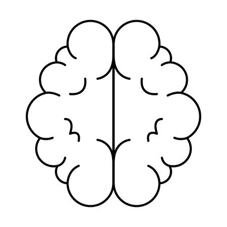 ontwerp van de het pictogram vectorillustratie van het hersenenorgel het geïsoleerde
