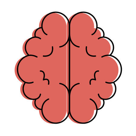 Brain organ isolated icon vector illustration design.