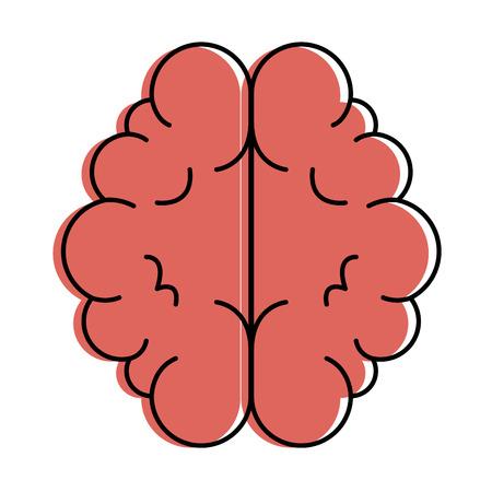 Vector de illustratieontwerp van het hersenenorgaan geïsoleerd pictogram.