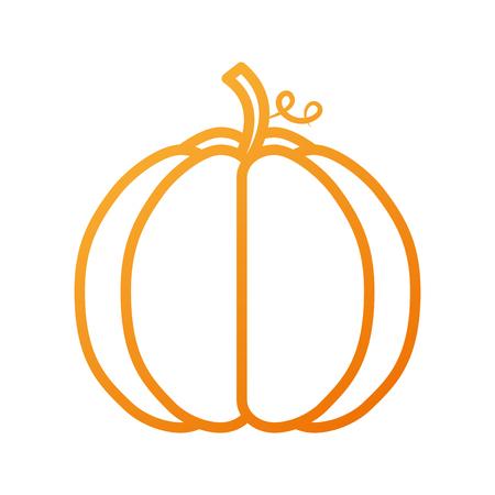 herfst seizoensgebonden pupmkin oogst natuur vector illustratie