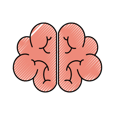 human brain mind or intelligence icon vector illustration Reklamní fotografie - 88433197