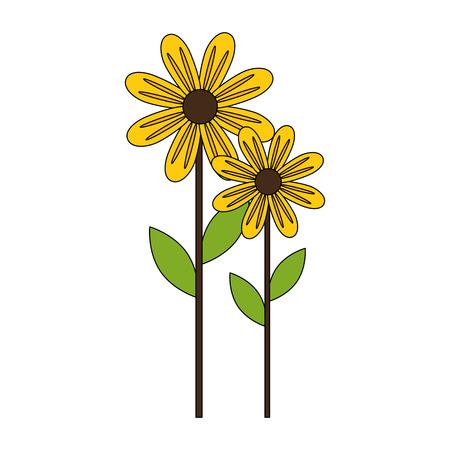 cute sunflower plant icon vector illustration design