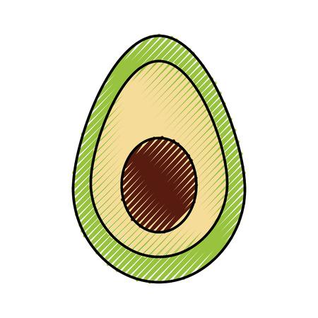 멕시코 음식 아보카도 신선한 전통 벡터 일러스트 레이션 일러스트