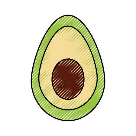 mexican food avocado fresh traditional vector illustration Illustration