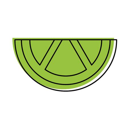 sliced lime juicy citrus fruit tropical vector illustration Illusztráció