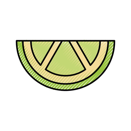 sliced lime juicy citrus fruit tropical vector illustration Banco de Imagens - 88443218