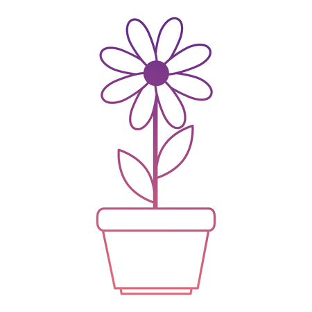 cute sunflower plant in pot vector illustration design Illustration