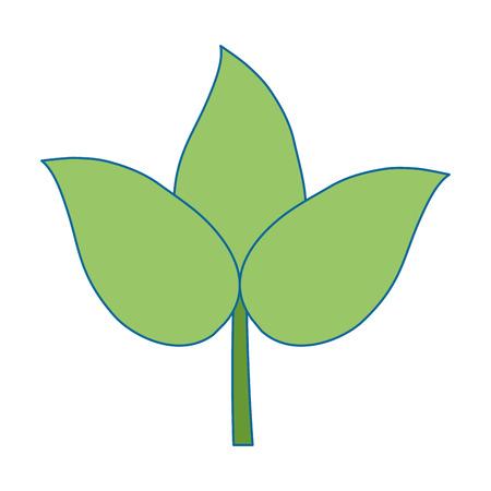 decoratives 절연 아이콘 벡터 일러스트 디자인 leafs