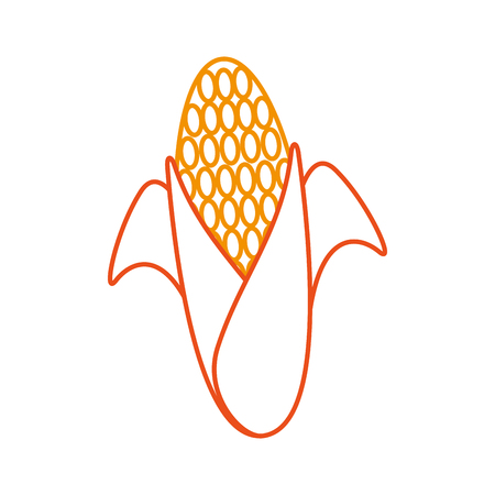 sweet corn cartoon thanksgiving day symbol vector illustration Иллюстрация