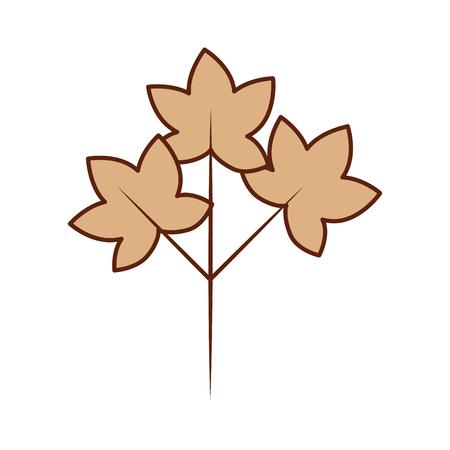 Herfstbladeren natuurlijke plantkunde gebladerte vectorillustratie Stockfoto - 88449833