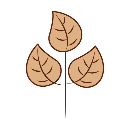 紅葉は自然の植物の葉ベクター イラスト